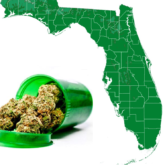 FLORIDA Cannabis Laws Undermined!