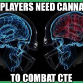 110 NFL Athletes Brains shown to have CTE