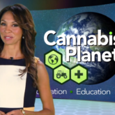 Cannabis Planet on KJLA TV, Los Angeles.